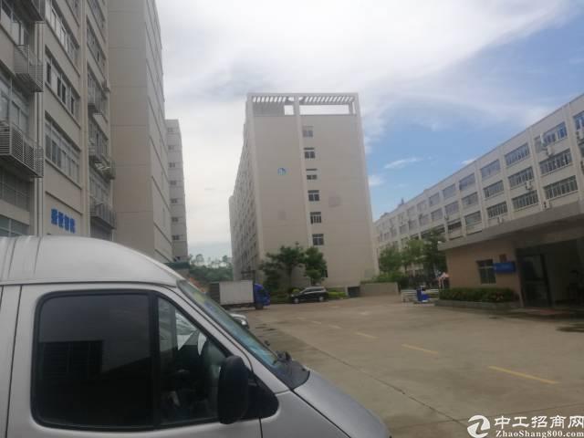 福永107国道边新出厂房1200平带消防喷淋带简单装修