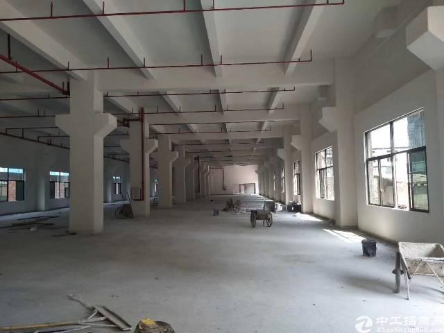 新出平湖7米高标准一楼1200平带办公室装修急租