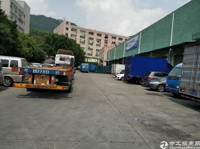 九围物流园1600平钢构带卸货平台