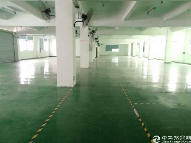 平湖华南城新出独院8000平方红本厂房-图5