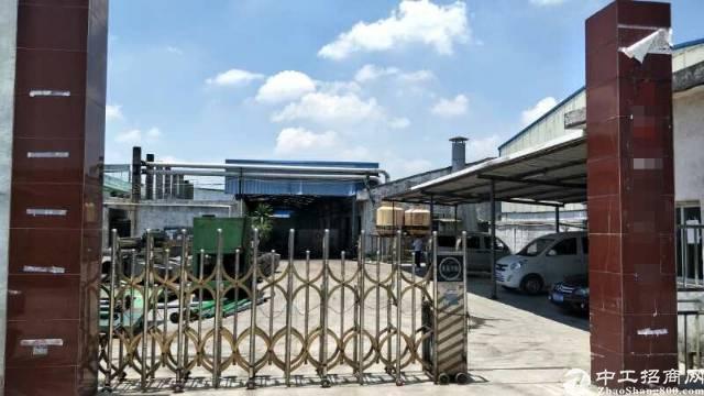 万江原房东独园钢结构厂房出租,滴水高,空地大,价格实惠