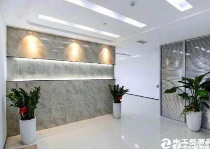 龙岗中心城CBD高端商务群超大落地窗拎包入驻直租图片2
