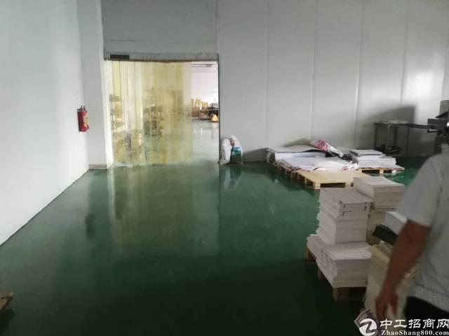 惠州仲恺高新区主干道旁独院楼上1250平标准厂房出租!