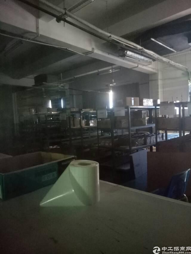 西乡九围精装修厂房招租