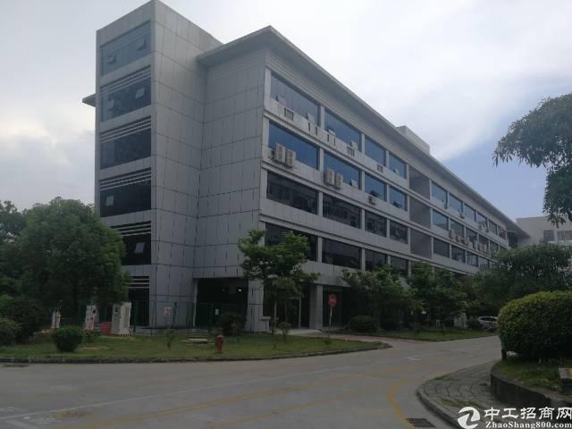 龙岗新出大型高新技术园区办公楼出租