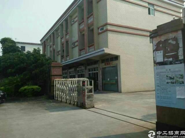 石碣占地280平建筑500平永久性宅基地民房出售