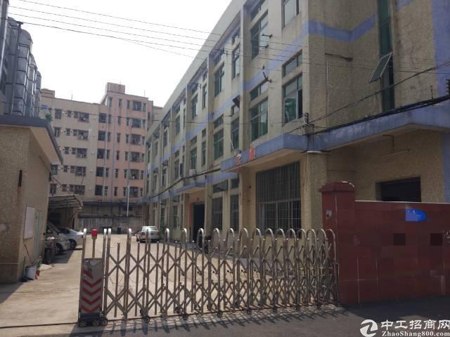 松岗洪桥头国道边一楼精装修厂房1500平低价招租