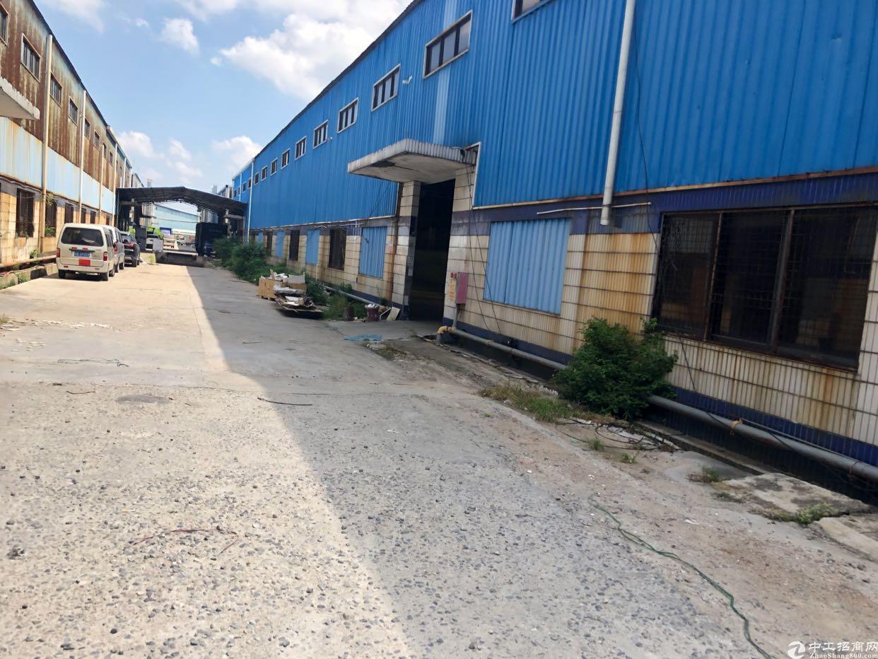 塘厦新出钢构仓库有卸货平台