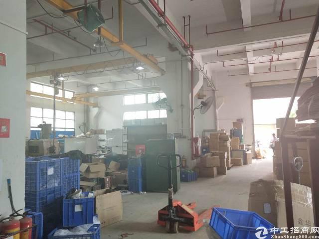 公明新出一楼800平米注塑厂房