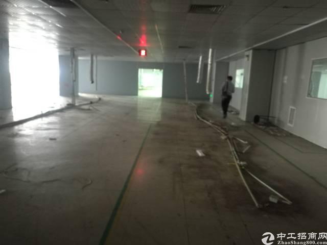 沙井地铁口附近新出楼上豪华装修整层3400平厂房出租-图2