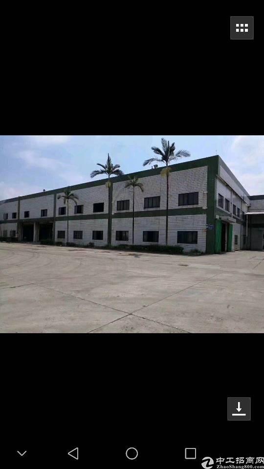 高埗镇工业园区一楼带牛角砖墙到顶钢构厂房岀租!