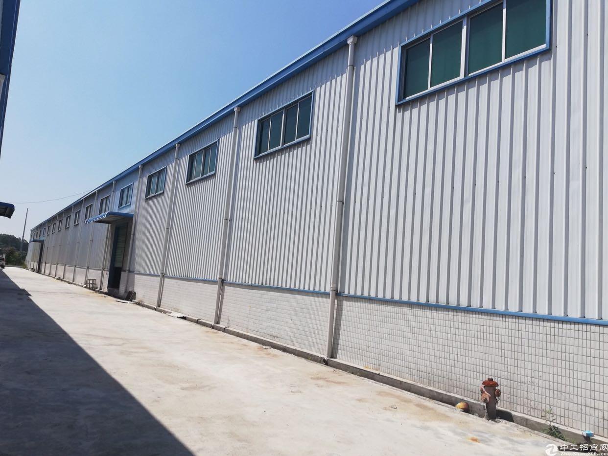 水口单一层2000平方钢构厂房出租