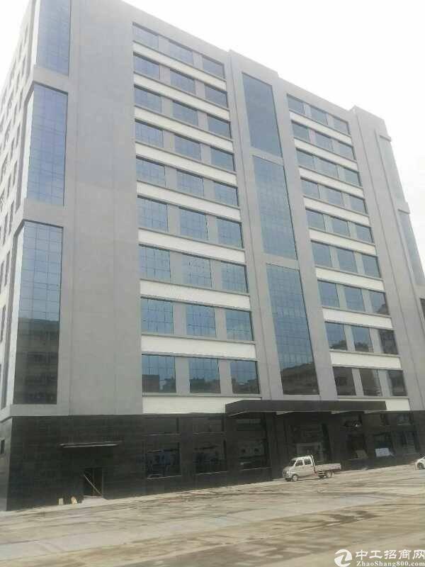 沿江高速红本新厂房好招工配套齐全多栋宿舍楼