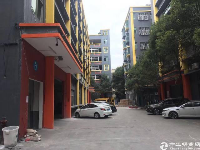 石排占地面积500平建筑面积980平永久性宅基地民房出售