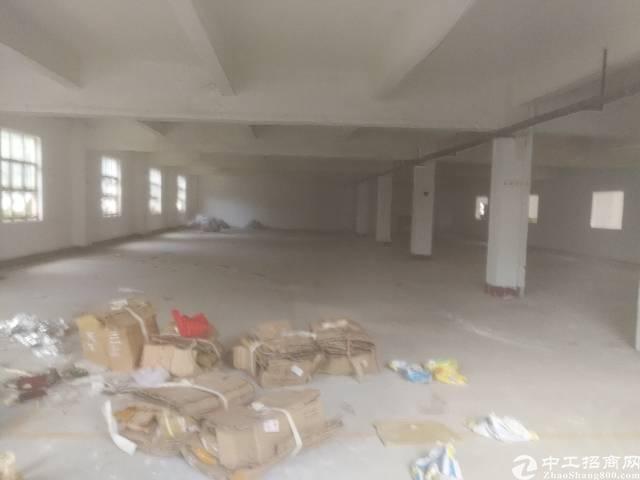 新出一楼厂房招租,工业区周边配套成熟易招工,可分租!