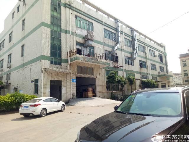 沙井共和楼上1080平方厂房招租