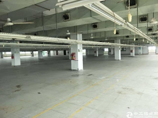 东莞市新出厂房