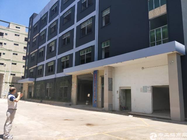 坪山大工业区旁工业园6000平米厂房出租有房产证