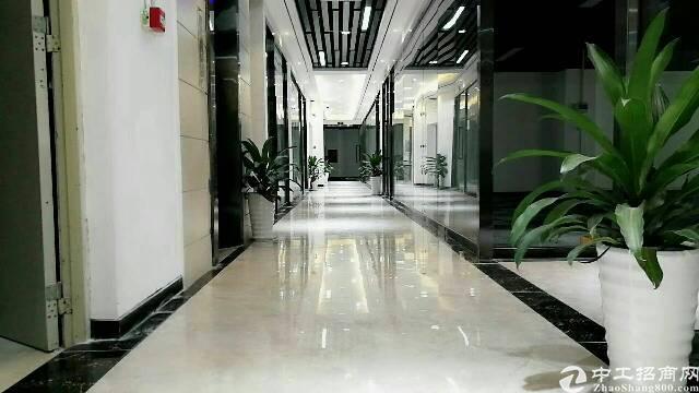 龙华天虹旁新出175平方,带2间办公室,拎包入住