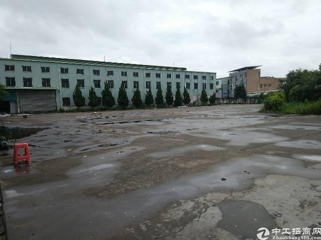 陈江镇主干道10米高独院钢构厂房12000平方米招租