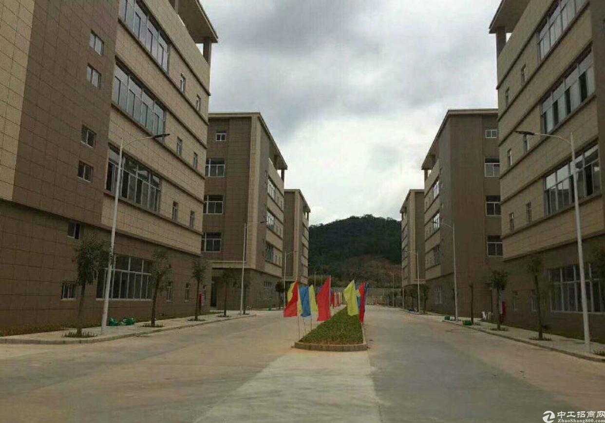 松山湖国有红本厂房出售500平米起售