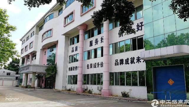 大岭山镇中心新出独栋写字楼图片1