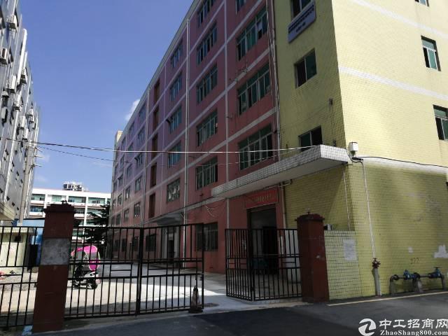 西乡九围洲石路边新出楼上700平厂房出租