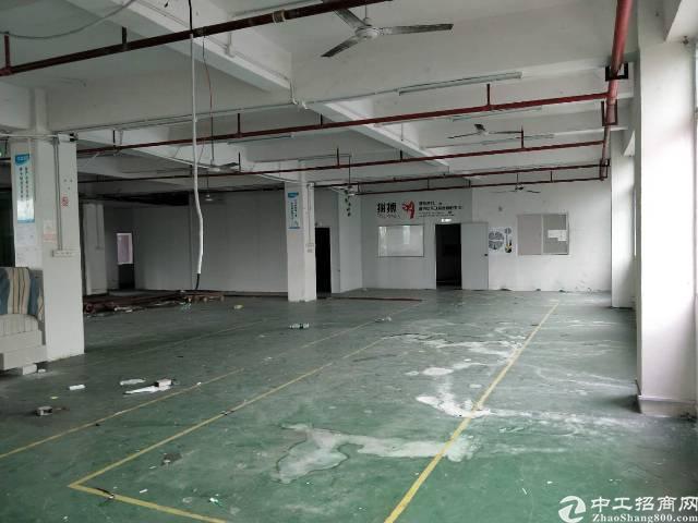西乡九围大型工业区内