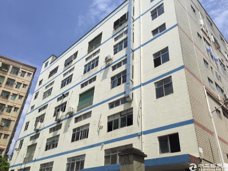 观澜牛湖新湖路边楼上带装修1080平标准厂房报价19