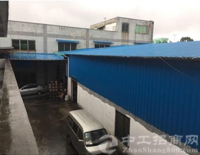 广州新塘占地6亩建筑4200 国有双证厂房