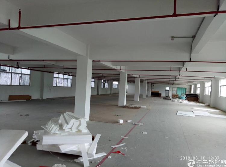 坪山大工业区新出楼上1980平方标准厂房出租