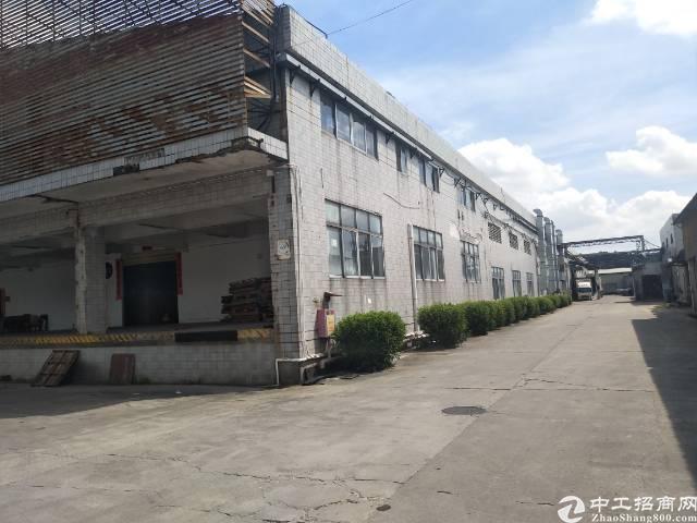 大岭山镇连平9600平方独院钢构出租