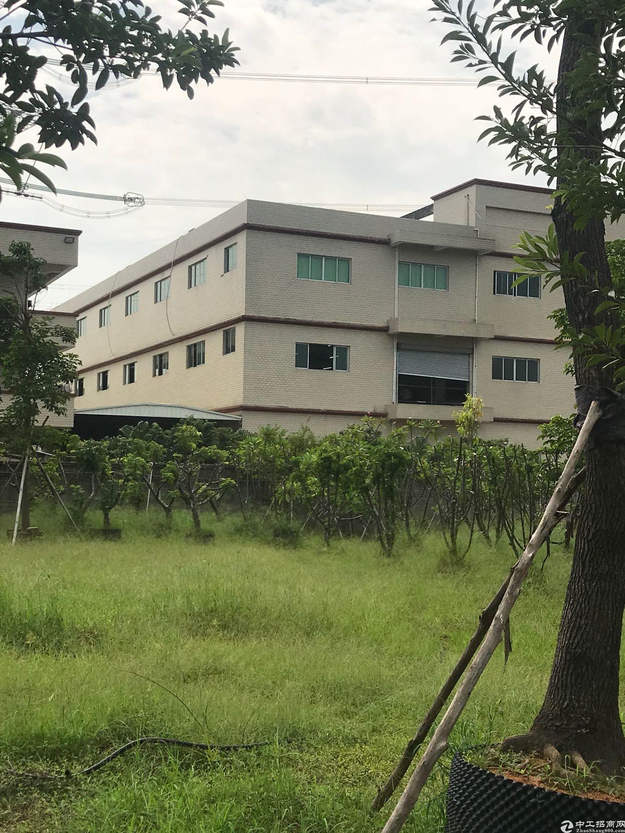 新塘国有证厂房出售