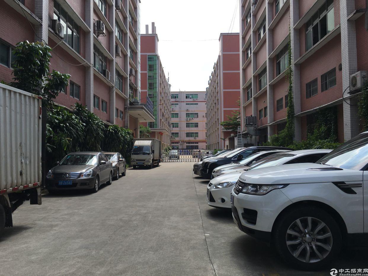 龙华大浪原业主厂房1-5F5000平米实际面积出租