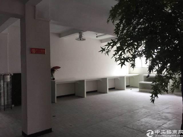 平湖华南城新木原房东标准厂房带办公室装修1000平出租