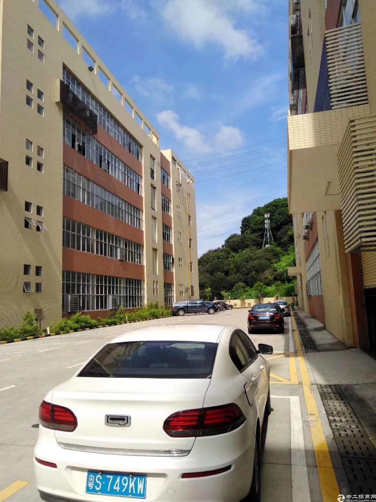 陈江镇中心地段二楼整层1800平方招租