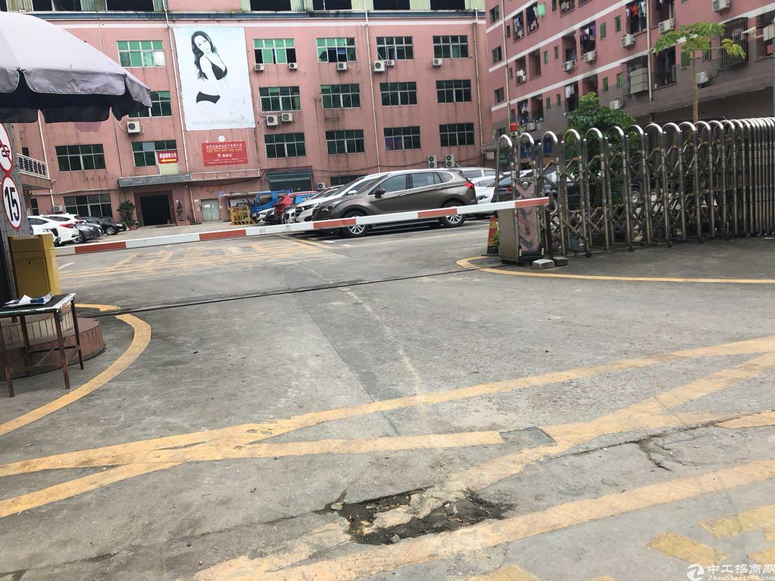 龙华天虹附近新出一楼标准厂房780平