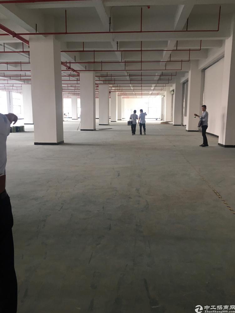 长安镇乌沙全新标准厂房