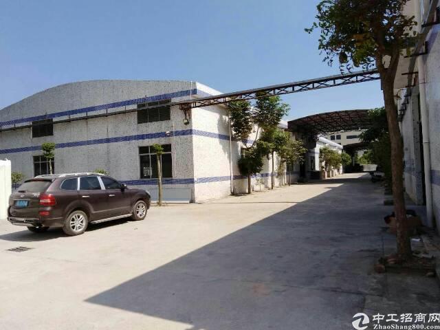 坪山碧岭社区金碧路边钢结构厂房1300平米