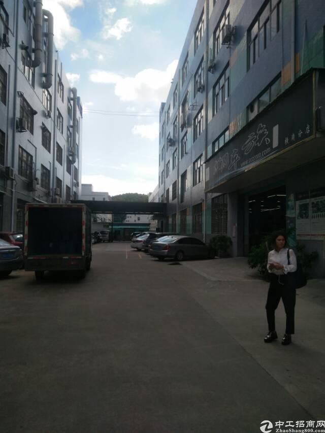 横岗 厂房 永湖地铁附近楼上1200平 厂房出租