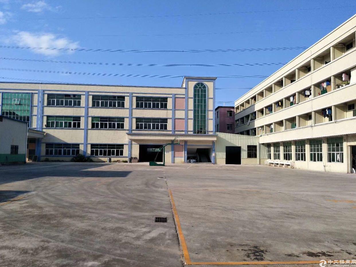 陈屋村新出大空地独院厂房10000平米适合各种行业,可分租