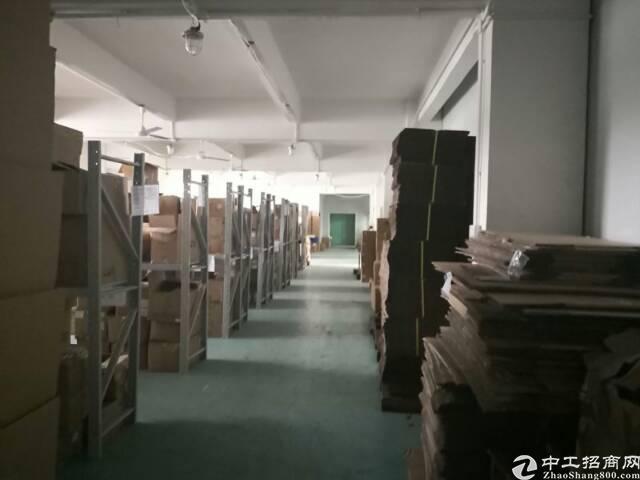 龙岗嶂背楼上1000平米厂房出租