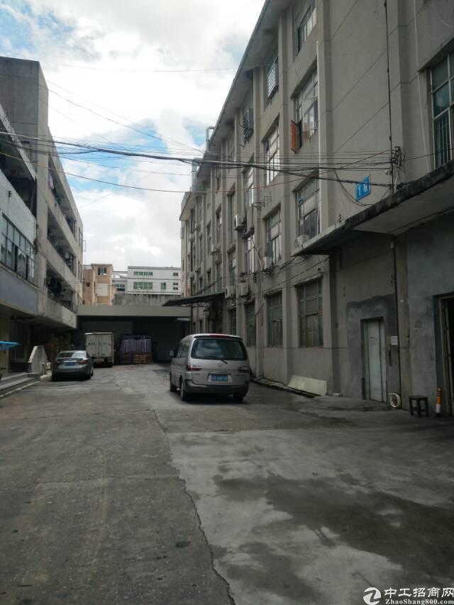 横岗厂房 电子厂 六约 240平 带装修 厂房出租