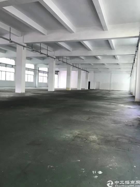 公明新出一楼1500平米厂房