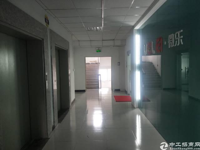 福永和平永佳福商场旁700平米带装修 办公贸易厂房