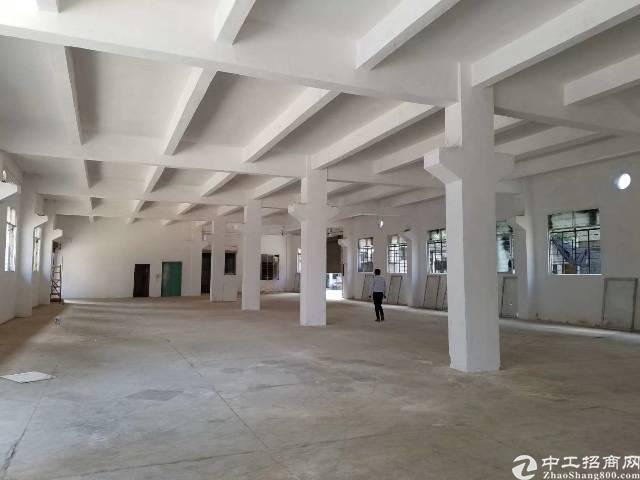 新出独门独院厂房3层4000平,宿舍1000平,价格15