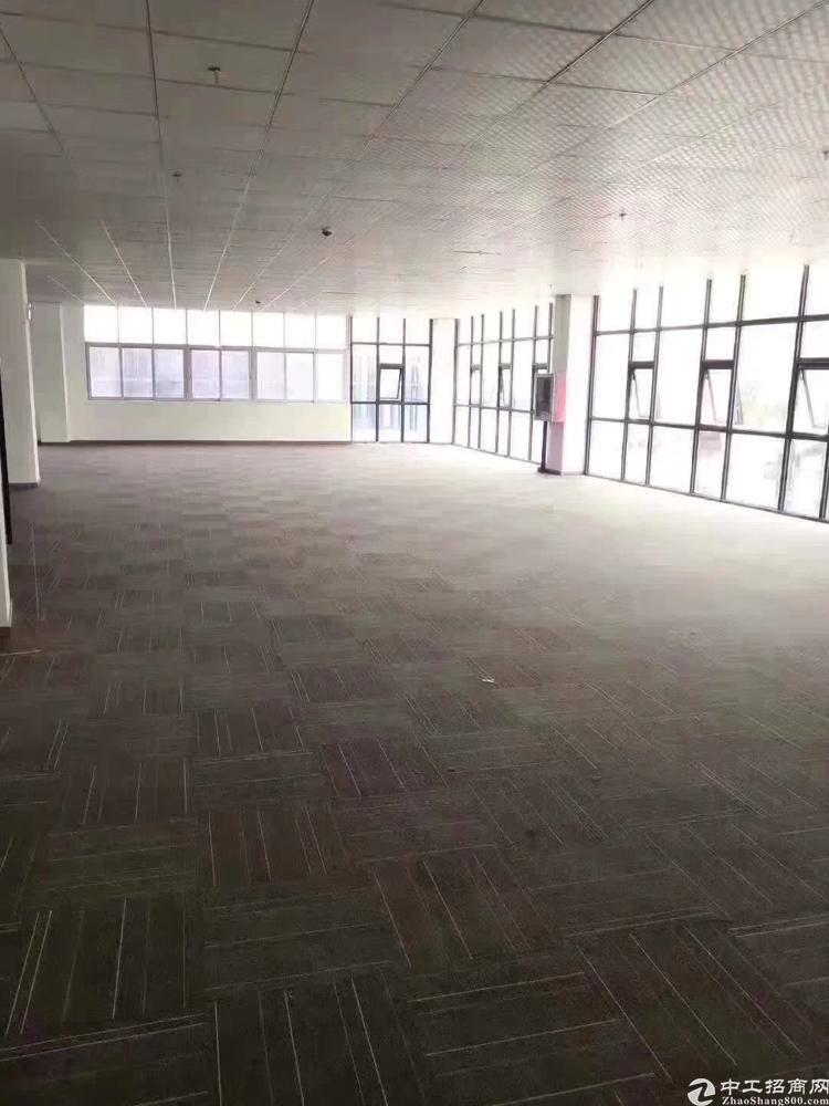 龙华大浪商业中心新出800平带装修价格美丽一整层