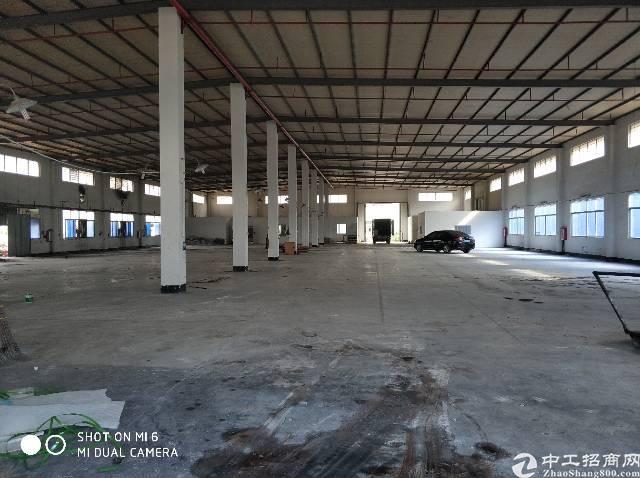 单一层钢构厂房1000平米招租