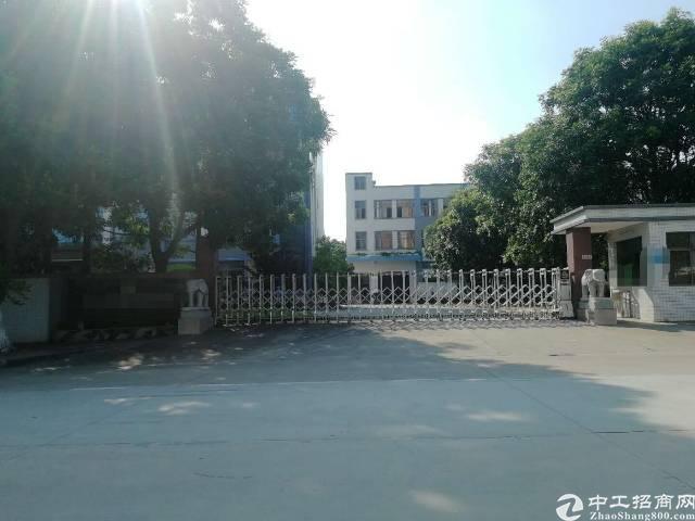 东莞市茶山镇原房东独门独院厂房招租