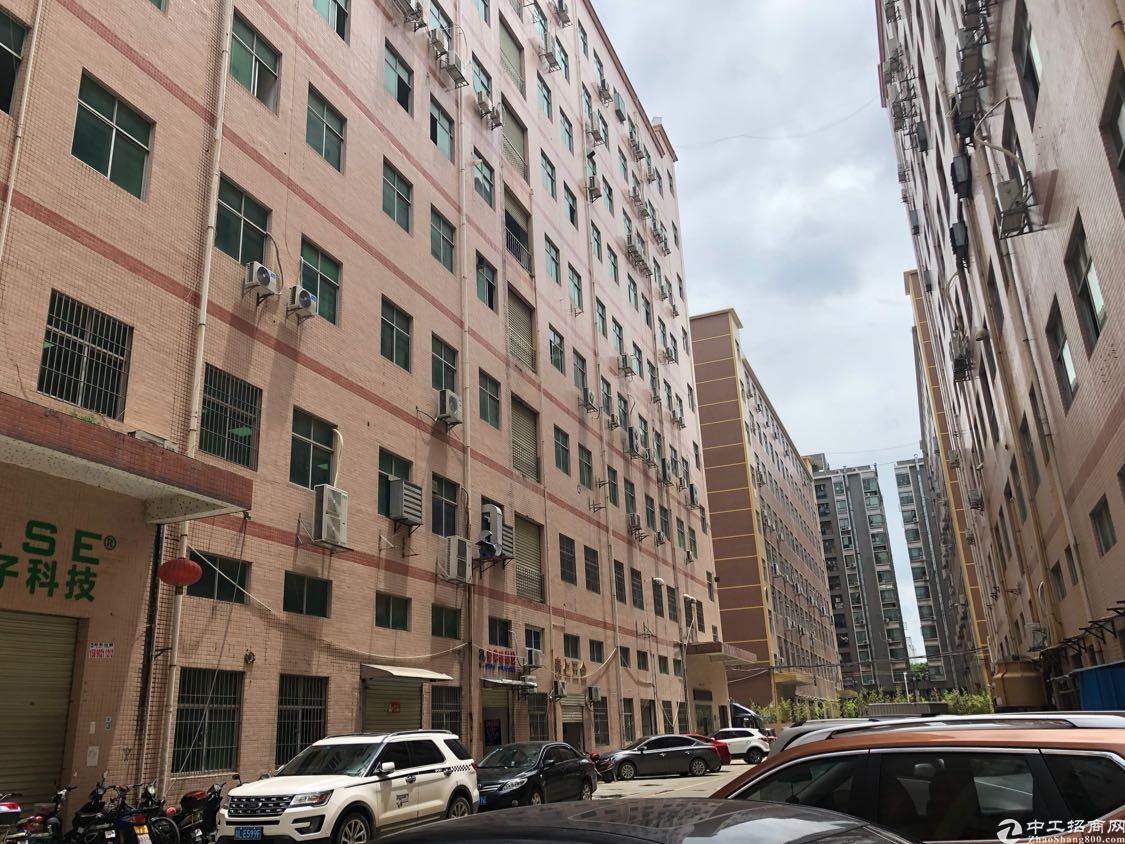 福永和平新出一楼700平方带阁楼厂房出租